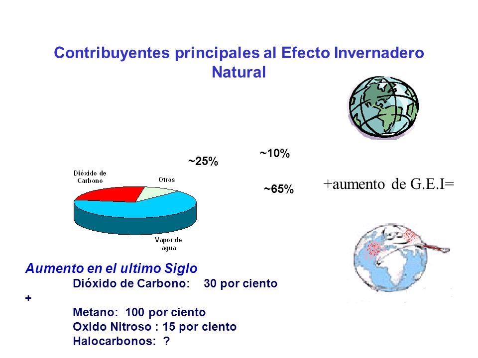 Contribuyentes principales al Efecto Invernadero Natural ~65% ~25% ~10% Aumento en el ultimo Siglo Dióxido de Carbono: 30 por ciento + Metano: 100 por ciento Oxido Nitroso : 15 por ciento Halocarbonos: .