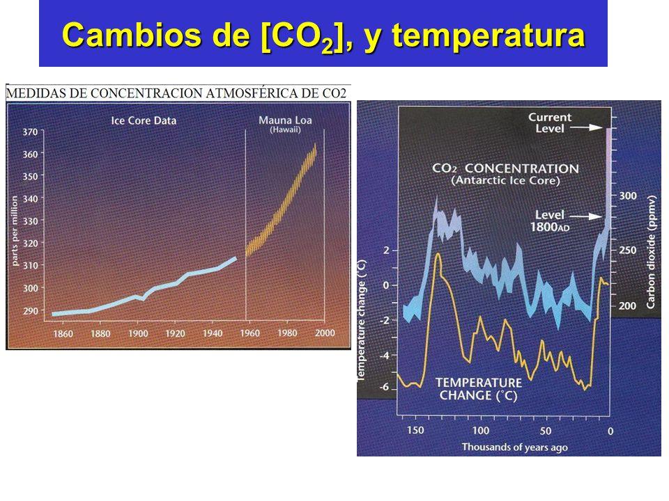 Cambios de [CO 2 ], y temperatura