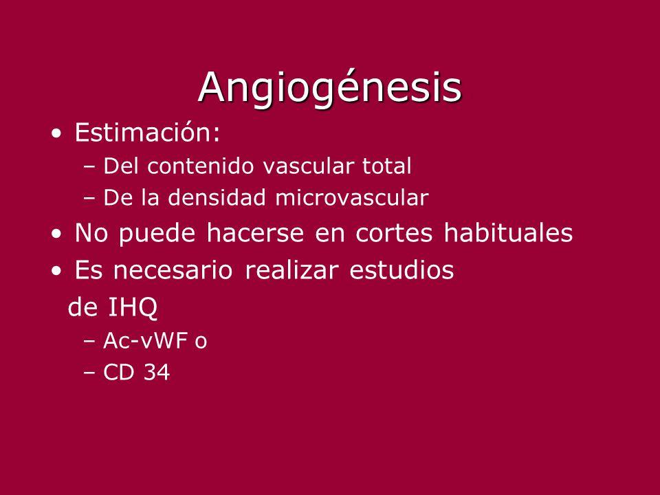 Angiogénesis Estimación: –Del contenido vascular total –De la densidad microvascular No puede hacerse en cortes habituales Es necesario realizar estud