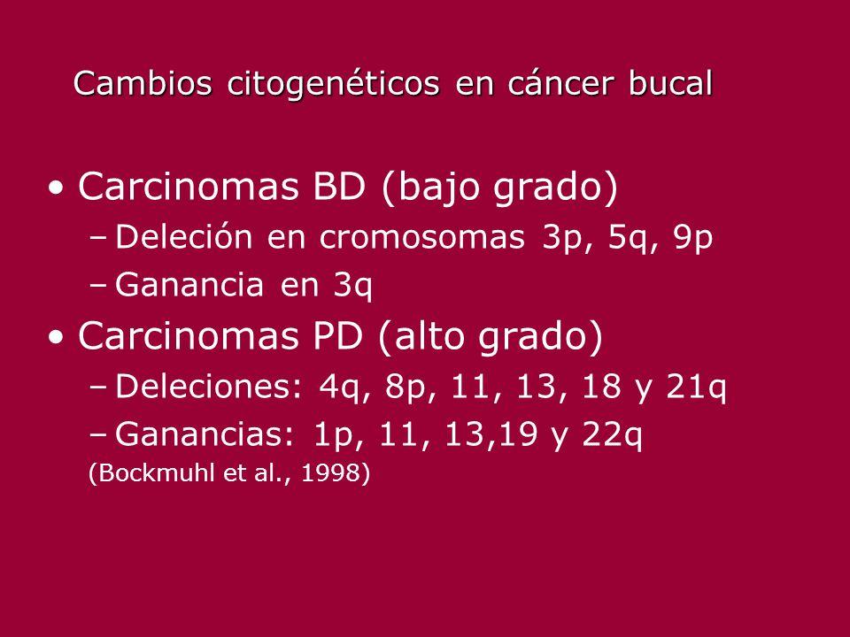 Cambios citogenéticos en cáncer bucal Carcinomas BD (bajo grado) –Deleción en cromosomas 3p, 5q, 9p –Ganancia en 3q Carcinomas PD (alto grado) –Deleci