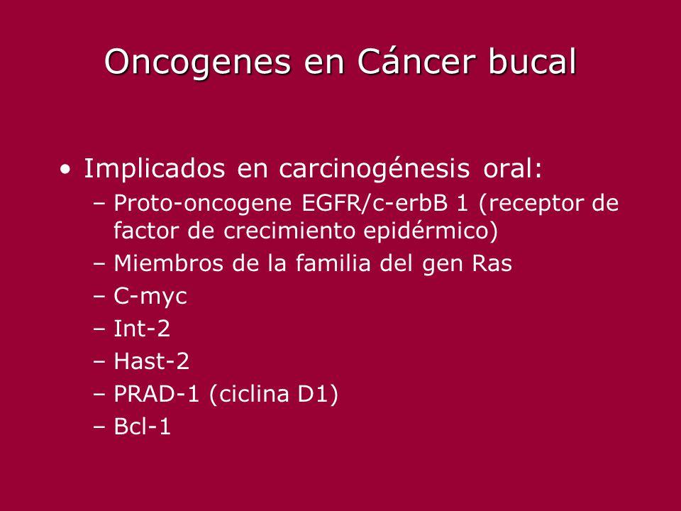 Oncogenes en Cáncer bucal Implicados en carcinogénesis oral: –Proto-oncogene EGFR/c-erbB 1 (receptor de factor de crecimiento epidérmico) –Miembros de