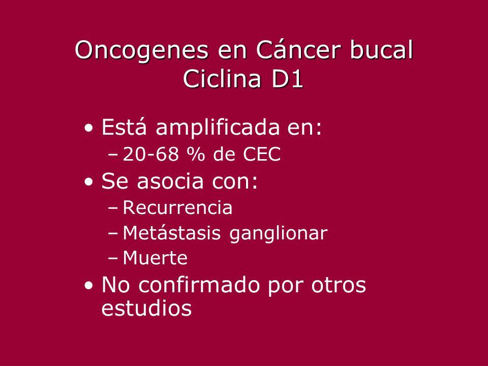 Oncogenes en Cáncer bucal Ciclina D1 Está amplificada en: –20-68 % de CEC Se asocia con: –Recurrencia –Metástasis ganglionar –Muerte No confirmado por