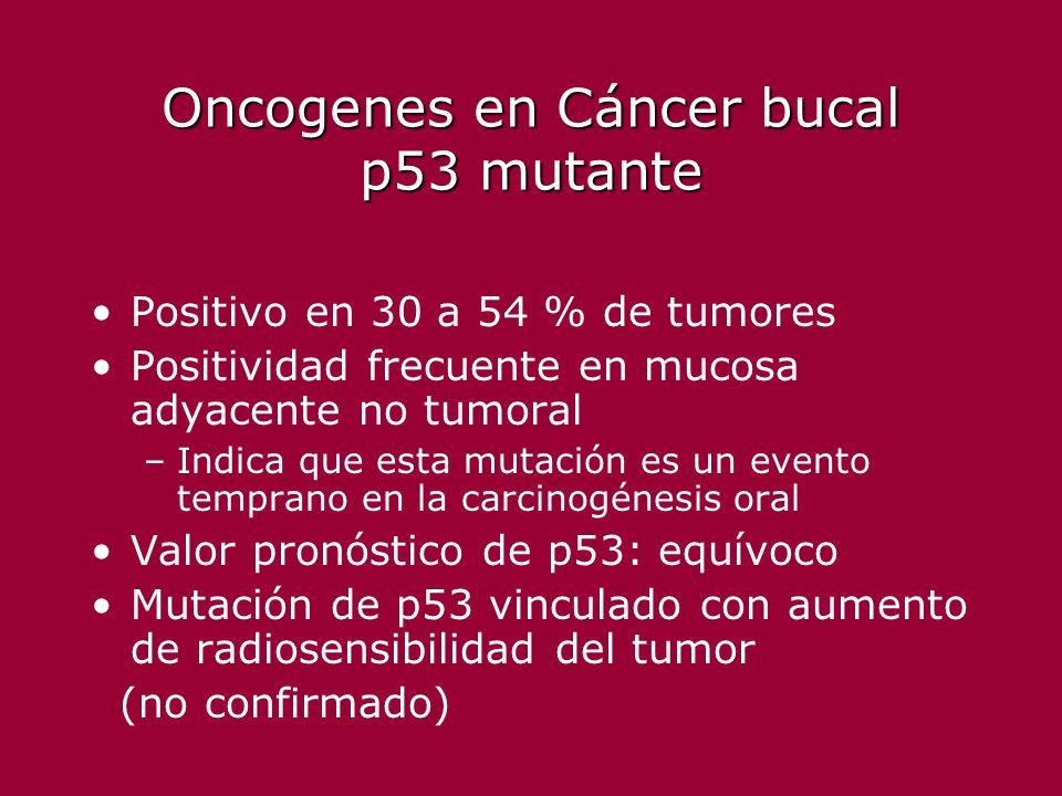 Oncogenes en Cáncer bucal p53 mutante Positivo en 30 a 54 % de tumores Positividad frecuente en mucosa adyacente no tumoral –Indica que esta mutación