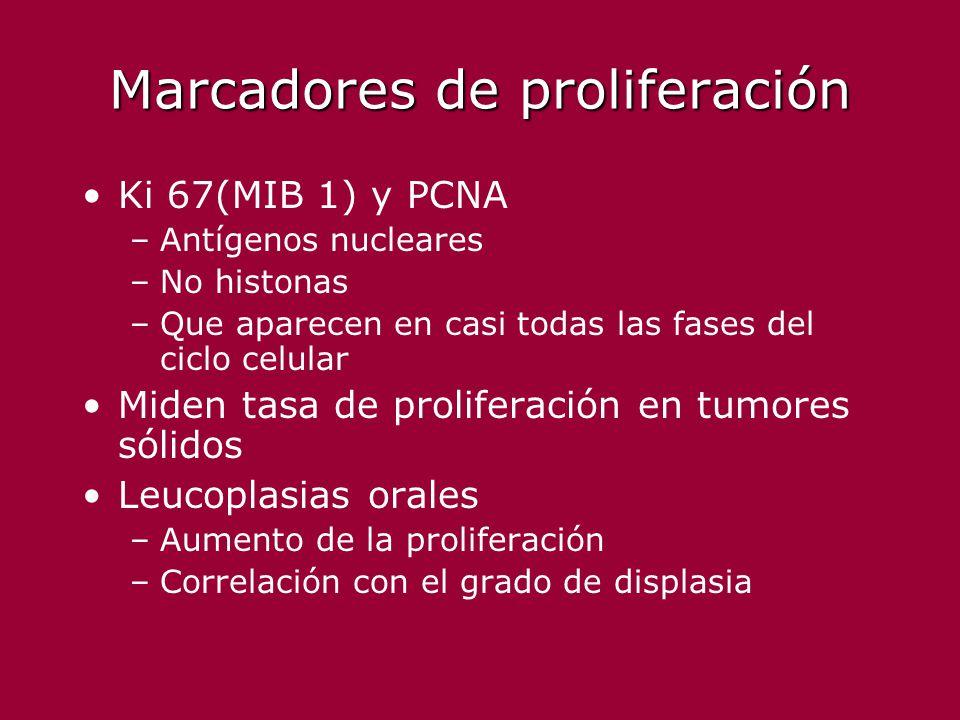 Marcadores de proliferación Ki 67(MIB 1) y PCNA –Antígenos nucleares –No histonas –Que aparecen en casi todas las fases del ciclo celular Miden tasa d