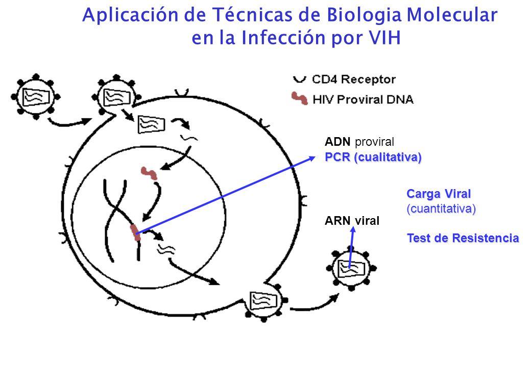 ARN viral ADN proviral PCR (cualitativa) Carga Viral (cuantitativa) Test de Resistencia Aplicación de Técnicas de Biologia Molecular en la Infección por VIH