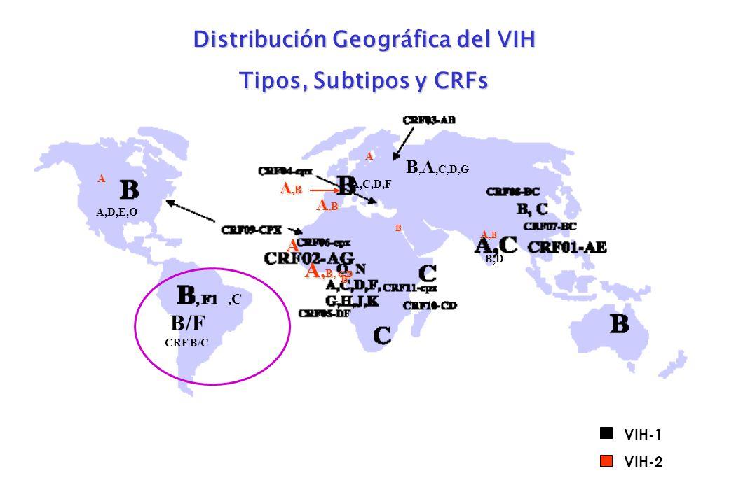 ,C A,C,D,F B,D B, A,C,D,G A,D,E,O B A A,B B A A, B, C,D A,B A VIH-1 VIH-2 B/F CRF B/C Distribución Geográfica del VIH Tipos, Subtipos y CRFs