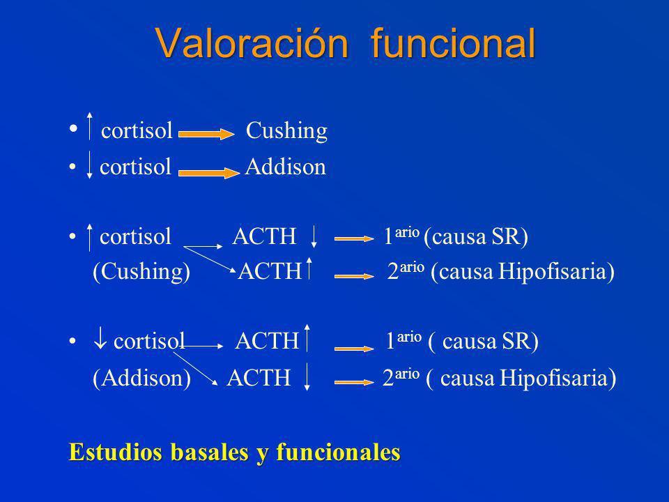 Valoración funcional cortisol Cushing cortisol Addison cortisol ACTH 1 ario (causa SR) (Cushing) ACTH 2 ario (causa Hipofisaria) cortisol ACTH 1 ario ( causa SR) (Addison) ACTH 2 ario ( causa Hipofisaria ) Estudios basales y funcionales