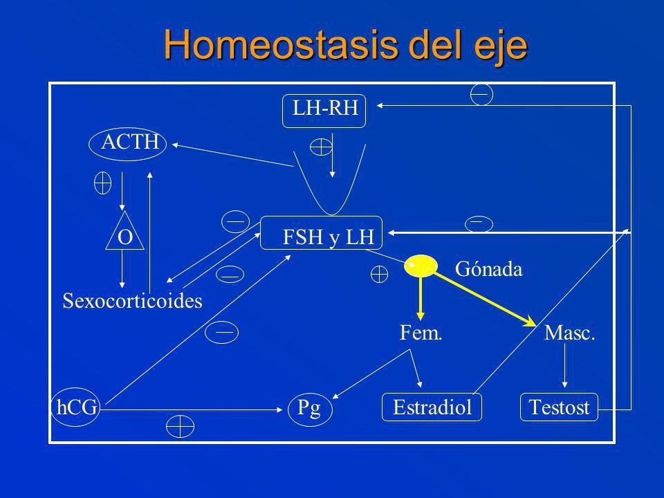 LH-RH ACTH O FSH y LH Gónada Sexocorticoides Fem.Masc.