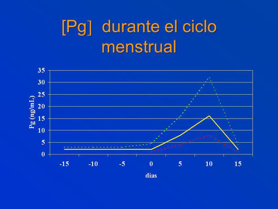 [Pg durante el ciclo menstrual