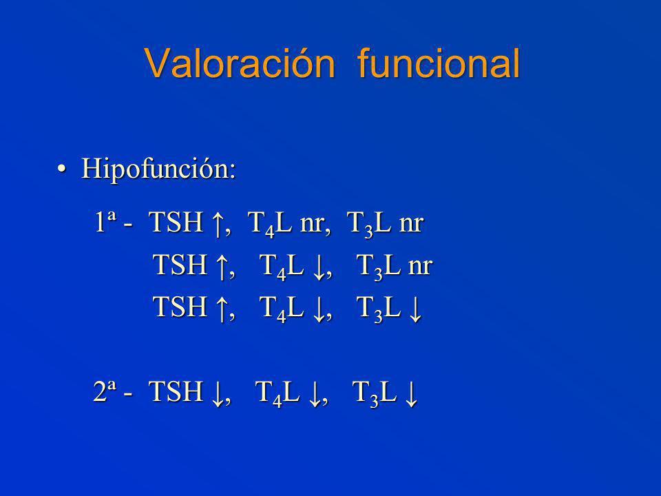 Valoración funcional Hipofunción:Hipofunción: 1ª - TSH, T 4 L nr, T 3 L nr 1ª - TSH, T 4 L nr, T 3 L nr TSH, T 4 L, T 3 L nr TSH, T 4 L, T 3 L nr TSH, T 4 L, T 3 L TSH, T 4 L, T 3 L 2ª - TSH, T 4 L, T 3 L 2ª - TSH, T 4 L, T 3 L
