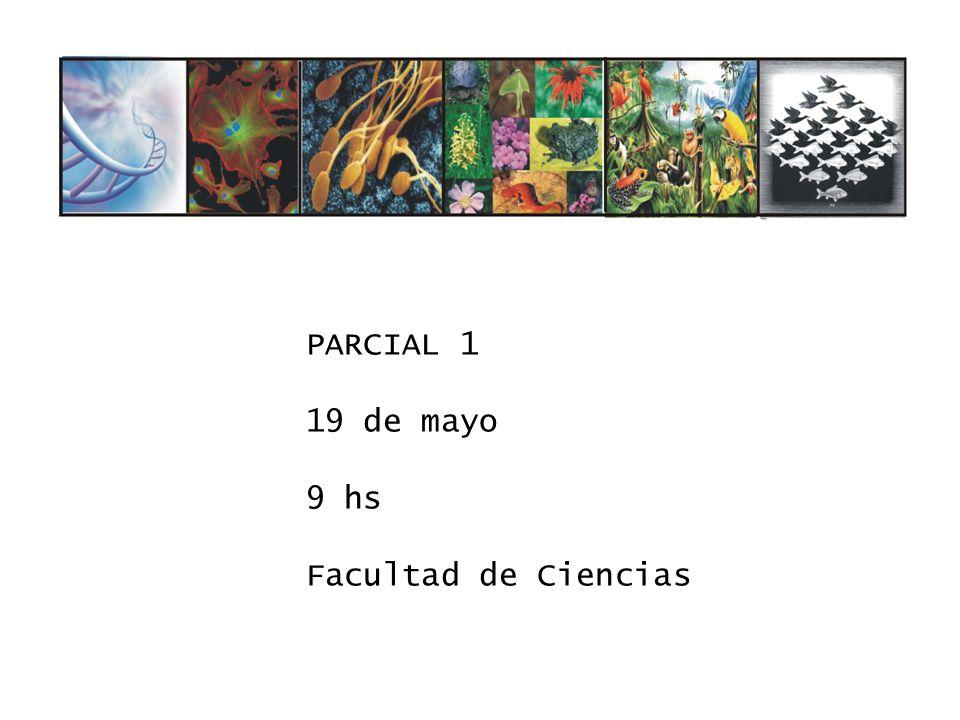 PARCIAL 1 19 de mayo 9 hs Facultad de Ciencias