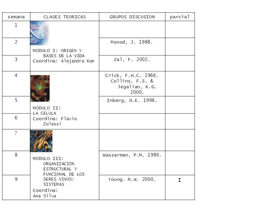 semanaCLASES TEORICASGRUPOS DISCUSIONparcial 1 MODULO I: ORIGEN Y BASES DE LA VIDA Coordina: Alejandra Kun 2Monod, J.