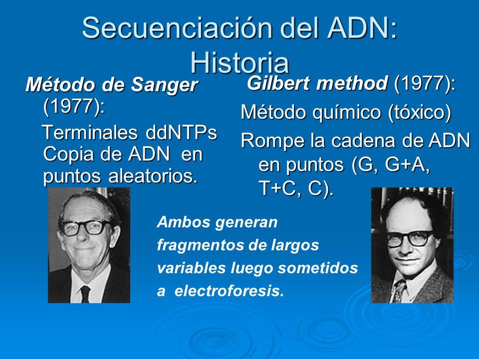 Secuenciación del ADN: Historia Método de Sanger (1977): Terminales ddNTPs Copia de ADN en puntos aleatorios. Terminales ddNTPs Copia de ADN en puntos