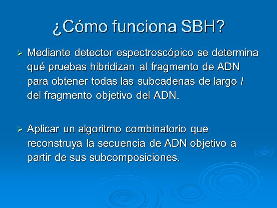 ¿Cómo funciona SBH? Mediante detector espectroscópico se determina qué pruebas hibridizan al fragmento de ADN para obtener todas las subcadenas de lar