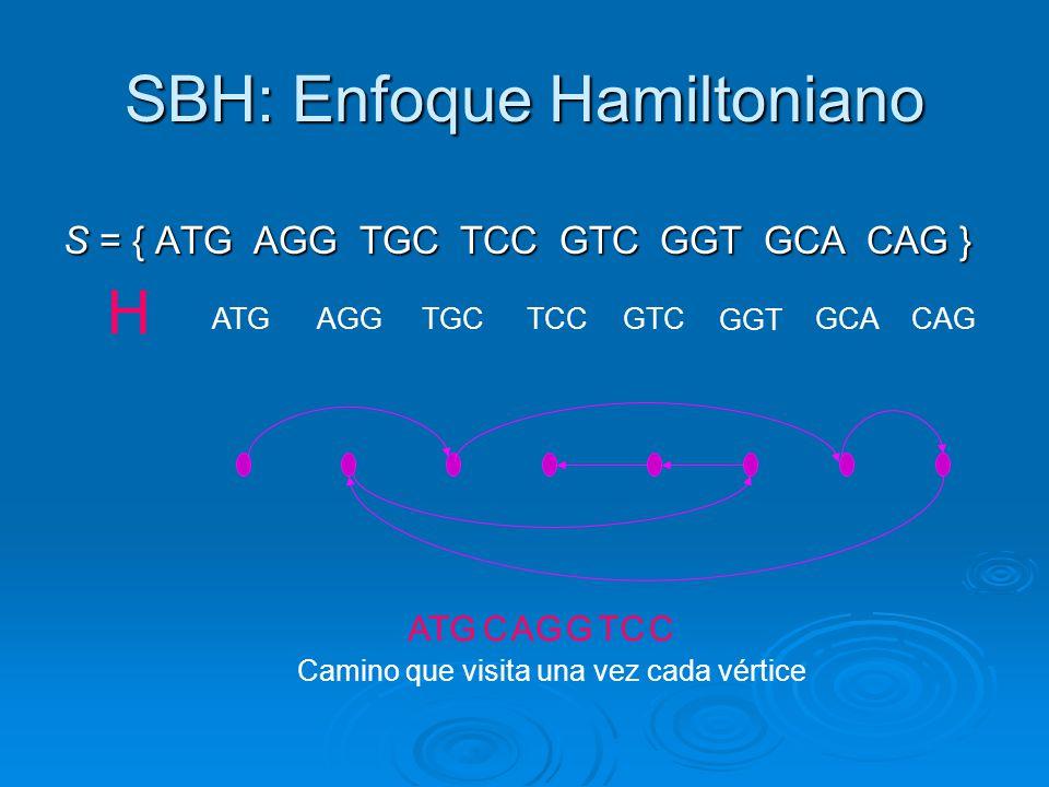SBH: Enfoque Hamiltoniano S = { ATG AGG TGC TCC GTC GGT GCA CAG } Camino que visita una vez cada vértice ATGAGGTGCTCC H GTC GGT GCACAG ATGCAGGTCC