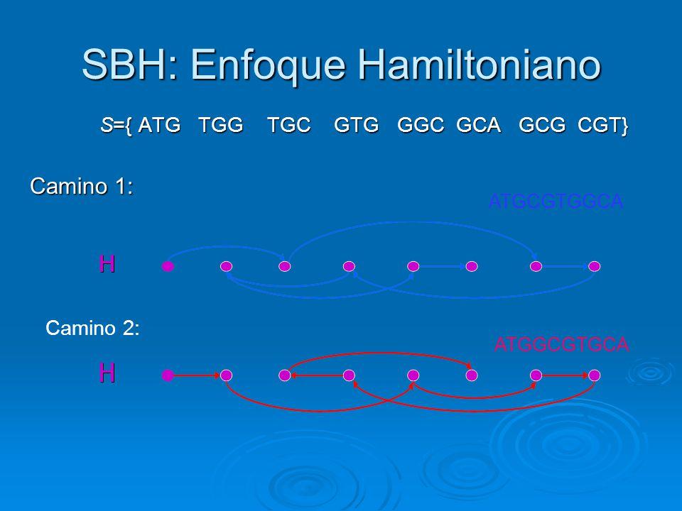 SBH: Enfoque Hamiltoniano S={ ATG TGG TGC GTG GGC GCA GCG CGT} S={ ATG TGG TGC GTG GGC GCA GCG CGT} Camino 1: ATGCGTGGCA ATGGCGTGCA Camino 2: