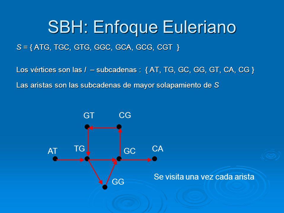 SBH: Enfoque Euleriano S = { ATG, TGC, GTG, GGC, GCA, GCG, CGT } S = { ATG, TGC, GTG, GGC, GCA, GCG, CGT } Los vértices son las l – subcadenas : { AT,