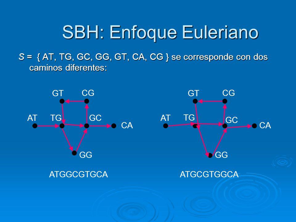 SBH: Enfoque Euleriano S = { AT, TG, GC, GG, GT, CA, CG } se corresponde con dos caminos diferentes: ATGGCGTGCA ATGCGTGGCA AT TG GC CA GG GT CG AT GT