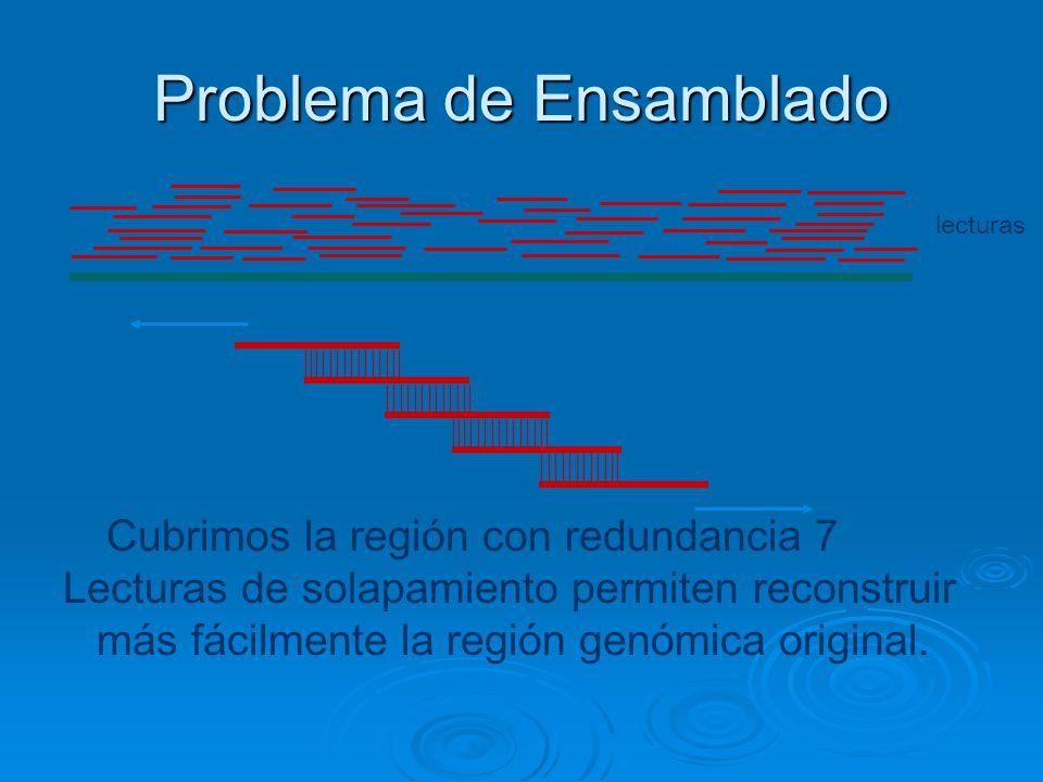 Problema de Ensamblado Cubrimos la región con redundancia 7 Lecturas de solapamiento permiten reconstruir más fácilmente la región genómica original.