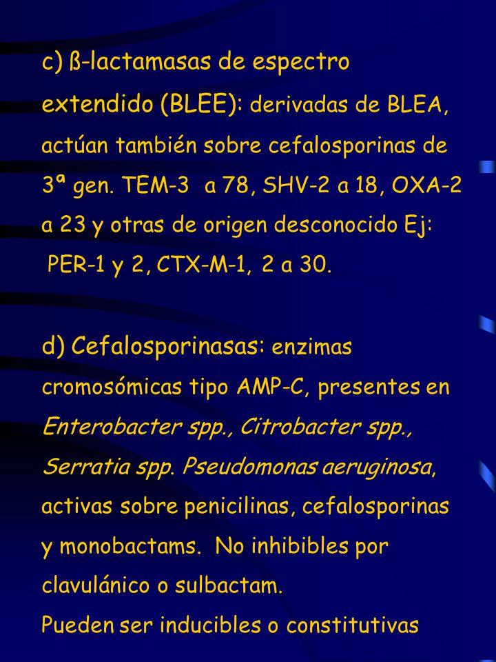 c) ß-lactamasas de espectro extendido (BLEE): derivadas de BLEA, actúan también sobre cefalosporinas de 3ª gen. TEM-3 a 78, SHV-2 a 18, OXA-2 a 23 y o