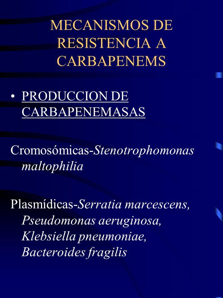 MECANISMOS DE RESISTENCIA A CARBAPENEMS PRODUCCION DE CARBAPENEMASAS Cromosómicas-Stenotrophomonas maltophilia Plasmídicas-Serratia marcescens, Pseudo