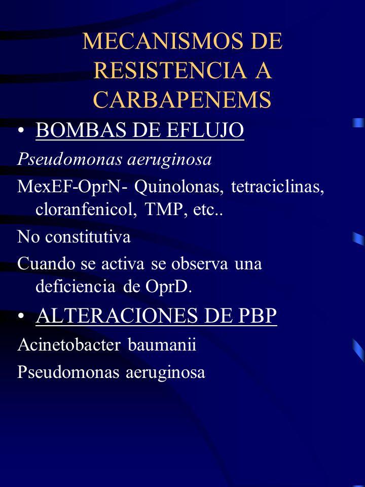 MECANISMOS DE RESISTENCIA A CARBAPENEMS BOMBAS DE EFLUJO Pseudomonas aeruginosa MexEF-OprN- Quinolonas, tetraciclinas, cloranfenicol, TMP, etc.. No co