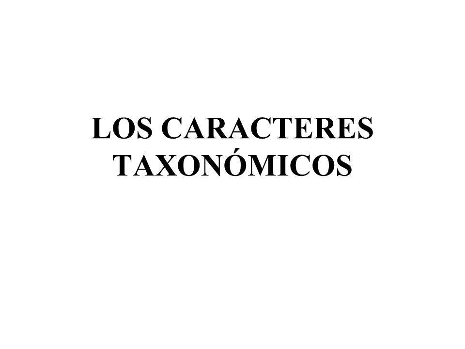 Un carácter taxonómico puede considerarse como una estructura observable de un organismo, utilizada para distinguirlo de otros.