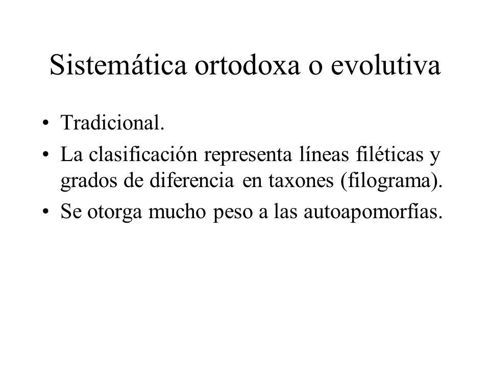 Sistemática ortodoxa o evolutiva Tradicional. La clasificación representa líneas filéticas y grados de diferencia en taxones (filograma). Se otorga mu