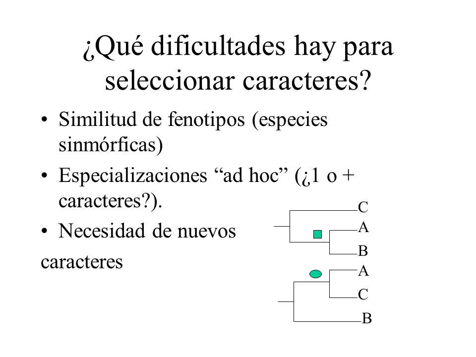 ¿Qué dificultades hay para seleccionar caracteres? Similitud de fenotipos (especies sinmórficas) Especializaciones ad hoc (¿1 o + caracteres?). Necesi