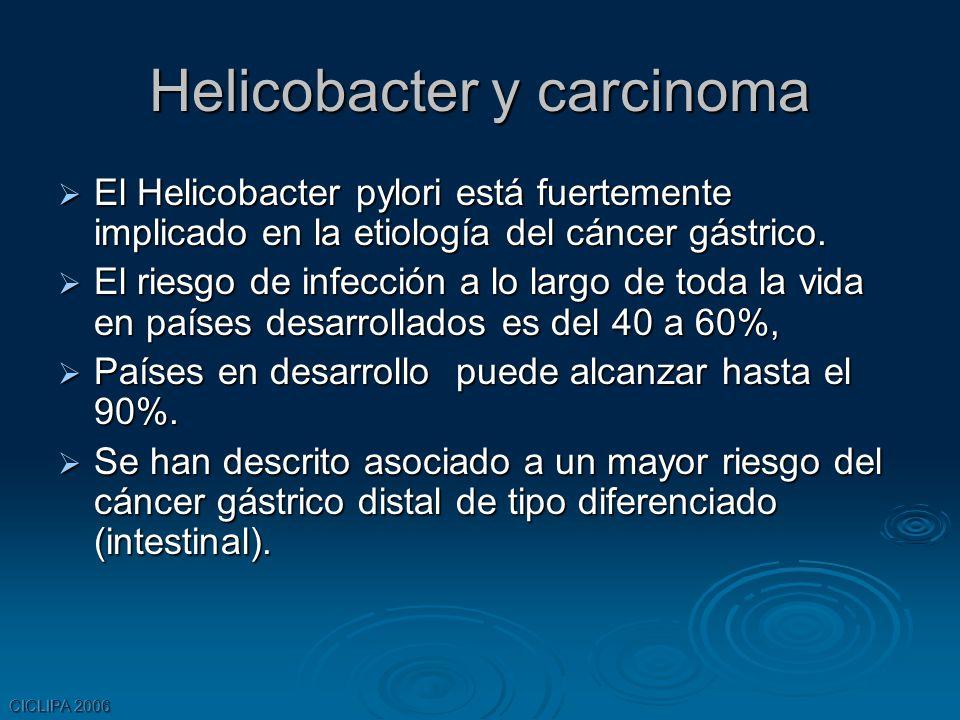 CICLIPA 2006 Helicobacter y carcinoma El Helicobacter pylori está fuertemente implicado en la etiología del cáncer gástrico. El Helicobacter pylori es