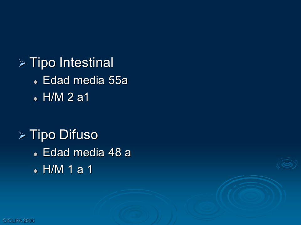 Tipo Intestinal Tipo Intestinal Edad media 55a Edad media 55a H/M 2 a1 H/M 2 a1 Tipo Difuso Tipo Difuso Edad media 48 a Edad media 48 a H/M 1 a 1 H/M