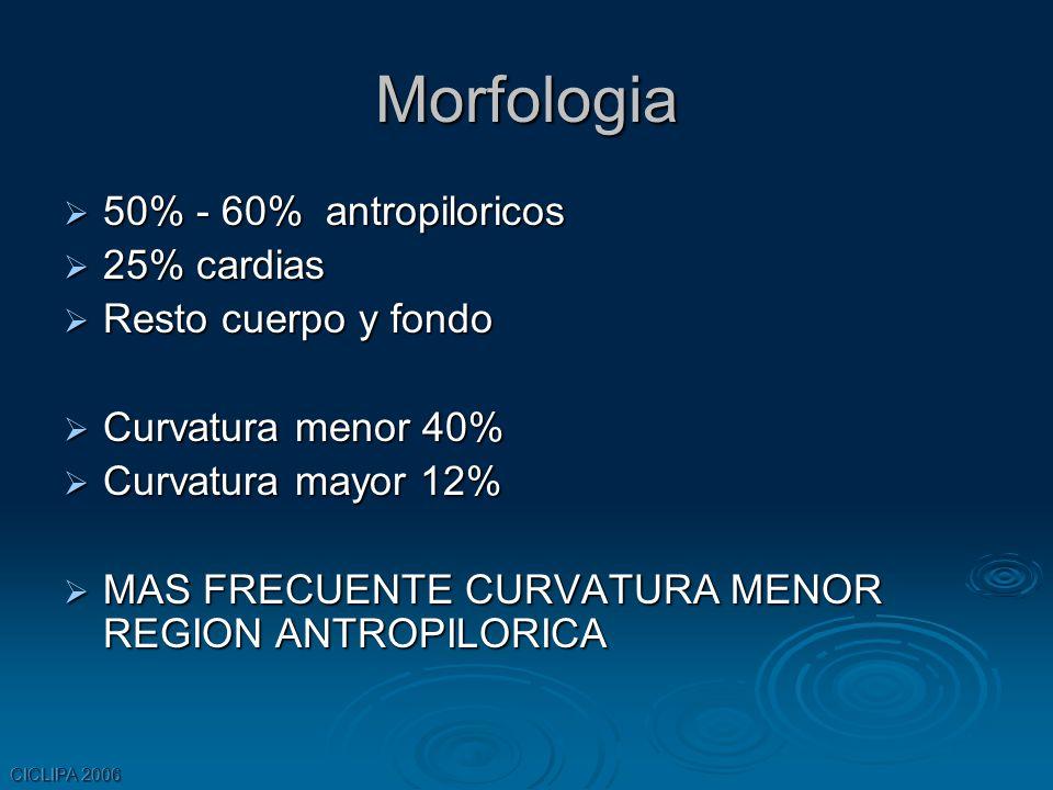 CICLIPA 2006 Morfologia 50% - 60% antropiloricos 50% - 60% antropiloricos 25% cardias 25% cardias Resto cuerpo y fondo Resto cuerpo y fondo Curvatura