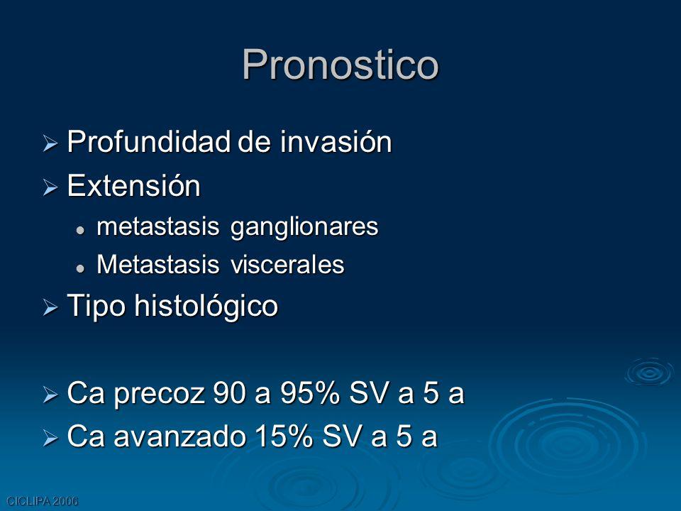 CICLIPA 2006 Pronostico Profundidad de invasión Profundidad de invasión Extensión Extensión metastasis ganglionares metastasis ganglionares Metastasis