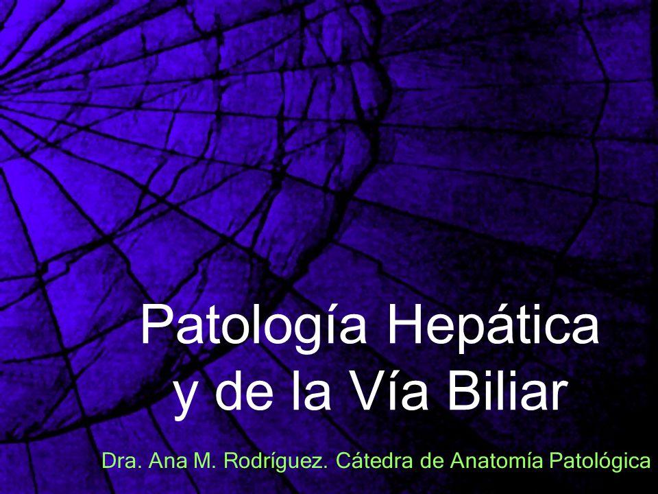 Patología Hepática y de la Vía Biliar Dra. Ana M. Rodríguez. Cátedra de Anatomía Patológica