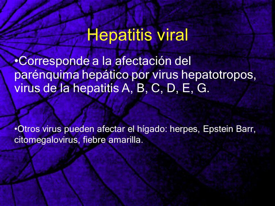Hepatitis viral Corresponde a la afectación del parénquima hepático por virus hepatotropos, virus de la hepatitis A, B, C, D, E, G. Otros virus pueden