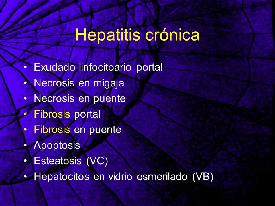 Hepatitis crónica Exudado linfocitoario portal Necrosis en migaja Necrosis en puente Fibrosis portal Fibrosis en puente Apoptosis Esteatosis (VC) Hepa