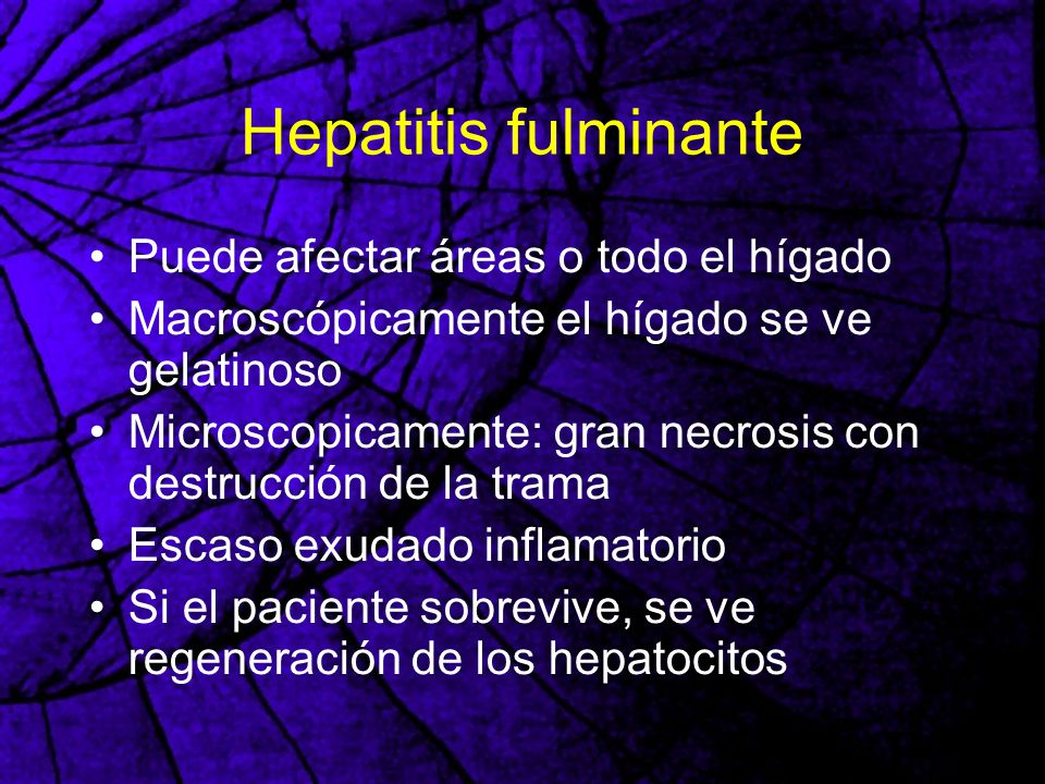 Hepatitis fulminante Puede afectar áreas o todo el hígado Macroscópicamente el hígado se ve gelatinoso Microscopicamente: gran necrosis con destrucció