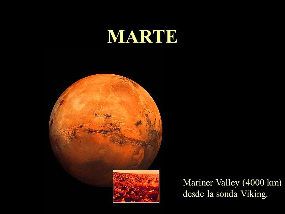 Vida en el Sistema Solar Se denominan extremófilos los organismos que viven en la Tierra en condiciones extremas de temperatura, presión, salinidad, a