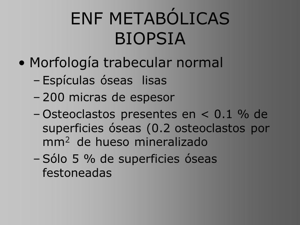 ENF METABÓLICAS BIOPSIA Morfología trabecular normal –Espículas óseas lisas –200 micras de espesor –Osteoclastos presentes en < 0.1 % de superficies ó
