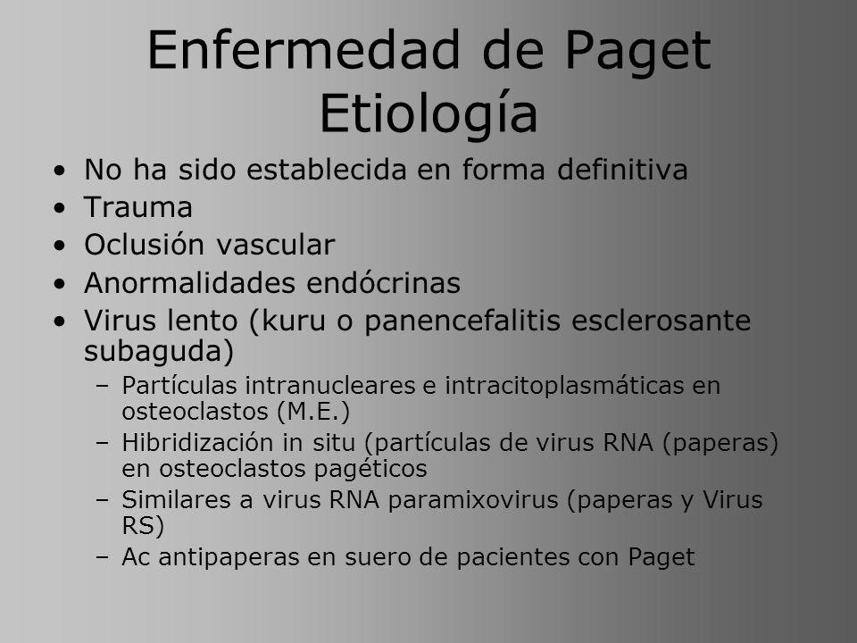 Enfermedad de Paget Etiología No ha sido establecida en forma definitiva Trauma Oclusión vascular Anormalidades endócrinas Virus lento (kuru o panence