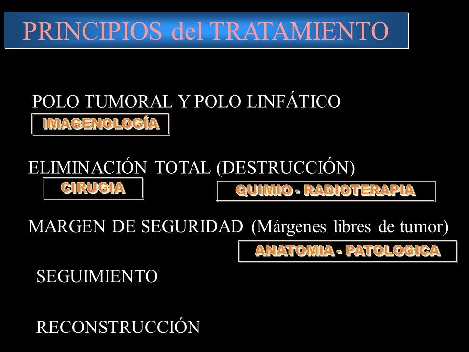 PRINCIPIOS del TRATAMIENTO ELIMINACIÓN TOTAL (DESTRUCCIÓN) MARGEN DE SEGURIDAD (Márgenes libres de tumor) POLO TUMORAL Y POLO LINFÁTICO SEGUIMIENTO RECONSTRUCCIÓN
