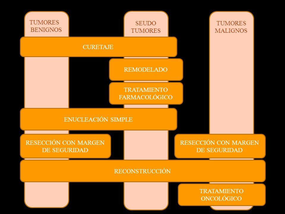 TUMORES MALIGNOS SEUDO TUMORES BENIGNOS CURETAJE ENUCLEACIÓN SIMPLE RESECCIÓN CON MARGEN DE SEGURIDAD REMODELADO TRATAMIENTO FARMACOLÓGICO RECONSTRUCCIÓN TRATAMIENTO ONCOLÓGICO RESECCIÓN CON MARGEN DE SEGURIDAD