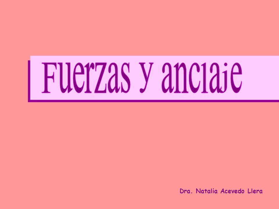 Dra. Natalia Acevedo Llera