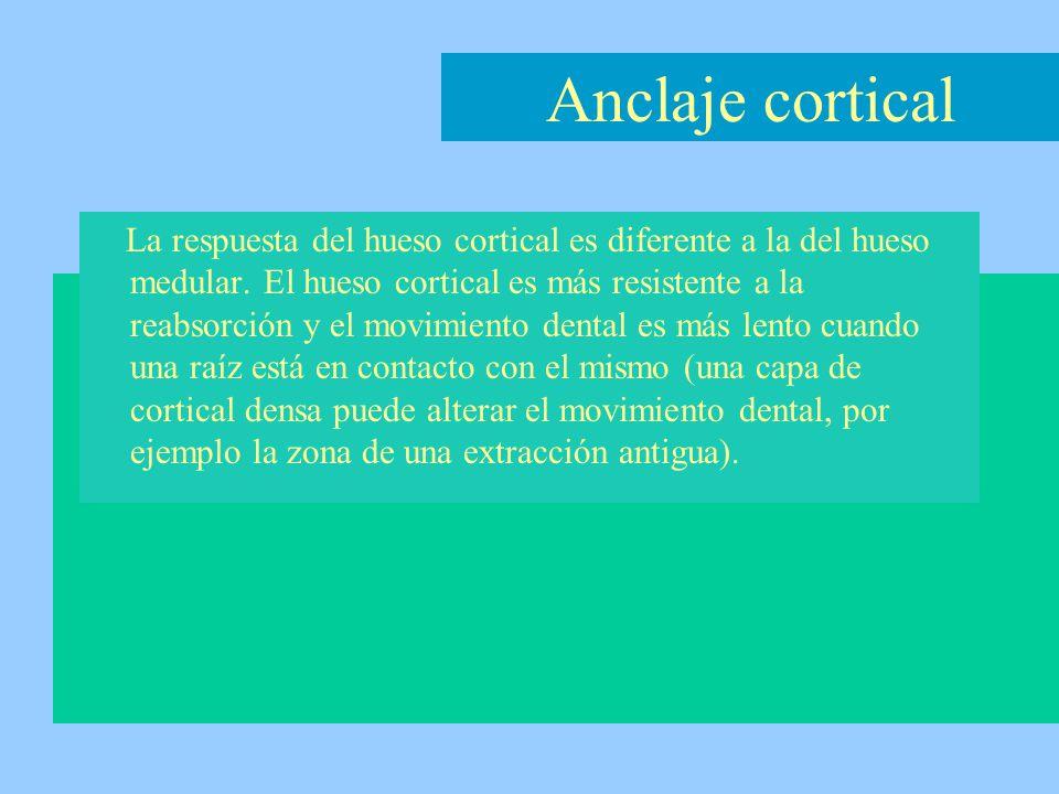 La respuesta del hueso cortical es diferente a la del hueso medular. El hueso cortical es más resistente a la reabsorción y el movimiento dental es má