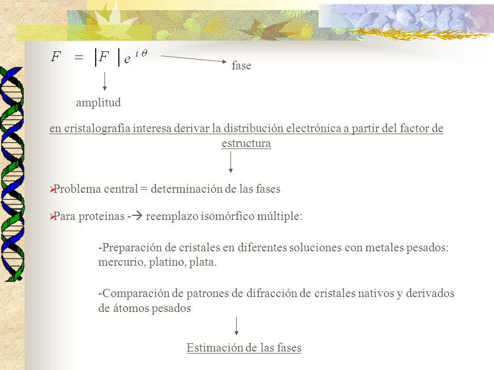 fase amplitud en cristalografía interesa derivar la distribución electrónica a partir del factor de estructura Problema central = determinación de las