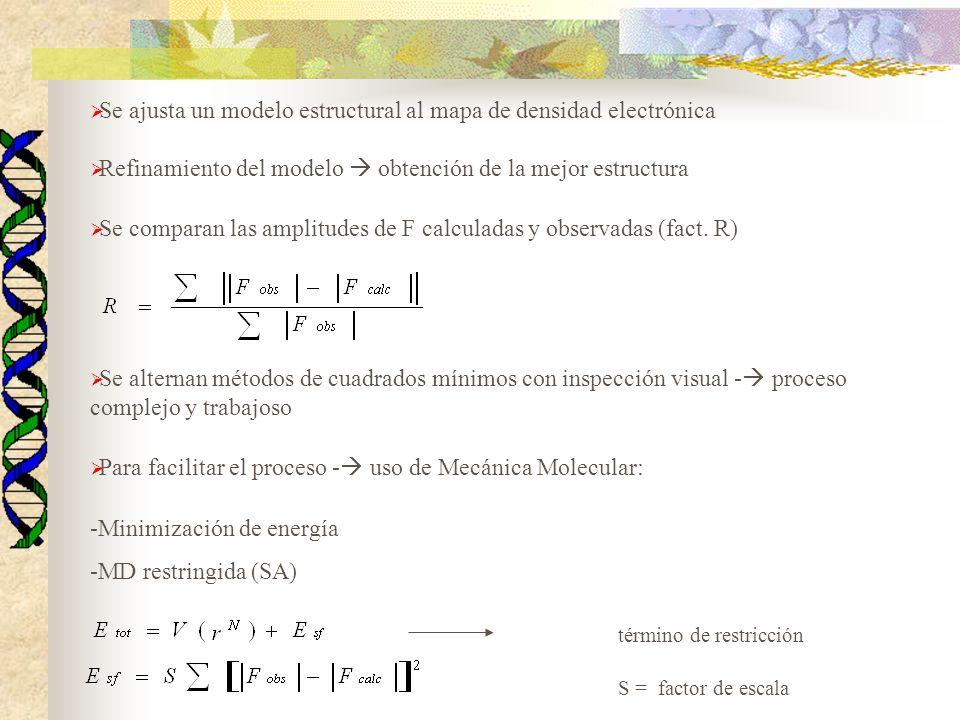 Se ajusta un modelo estructural al mapa de densidad electrónica Refinamiento del modelo obtención de la mejor estructura Se comparan las amplitudes de
