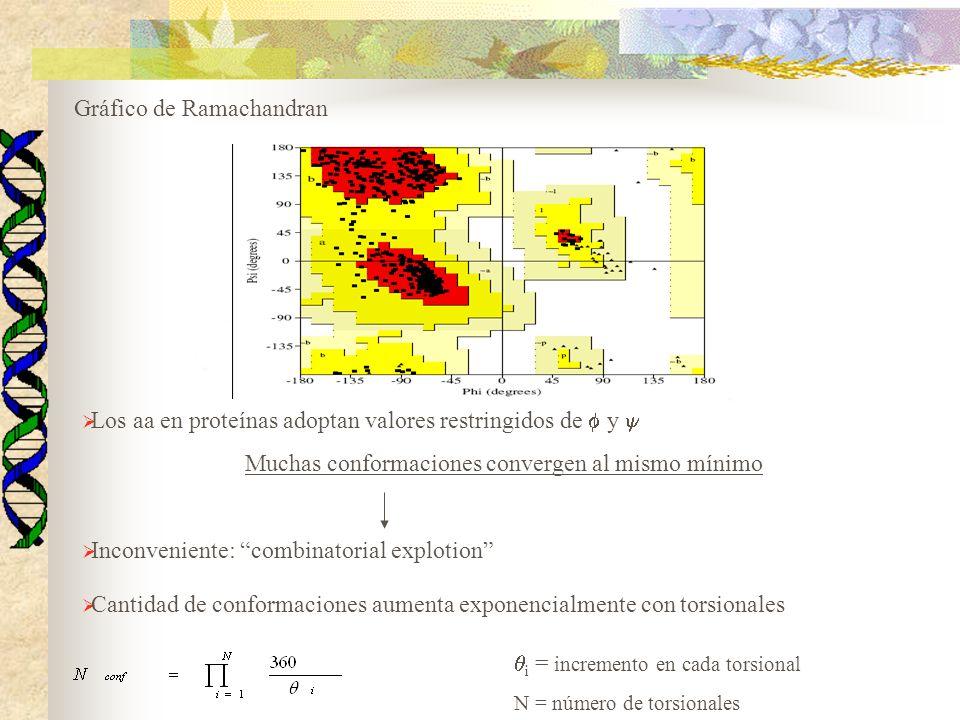 Gráfico de Ramachandran Los aa en proteínas adoptan valores restringidos de y Muchas conformaciones convergen al mismo mínimo Inconveniente: combinato
