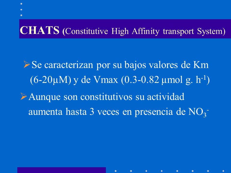 CHATS (Constitutive High Affinity transport System) Se caracterizan por su bajos valores de Km (6-20µM) y de Vmax (0.3-0.82 µmol g. h -1 ) Aunque son