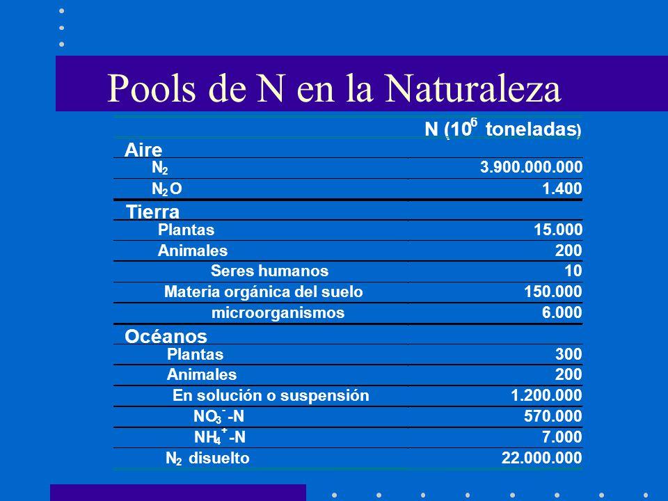 N (10 6 toneladas ) Aire N 2 3.900.000.000 N 2 O1.400 Tierra Plantas15.000 Animales200 Seres humanos10 Materia orgánica del suelo150.000 microorganism