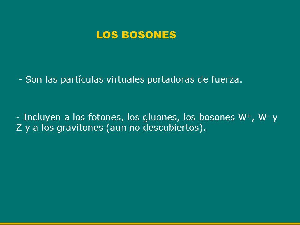 - Son las partículas virtuales portadoras de fuerza. LOS BOSONES - Incluyen a los fotones, los gluones, los bosones W +, W - y Z y a los gravitones (a